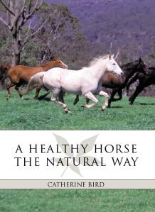 A HEALTHY HORSE