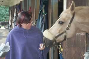 The use of any essential oils will help your horse maintain a stronger and healthier immune system